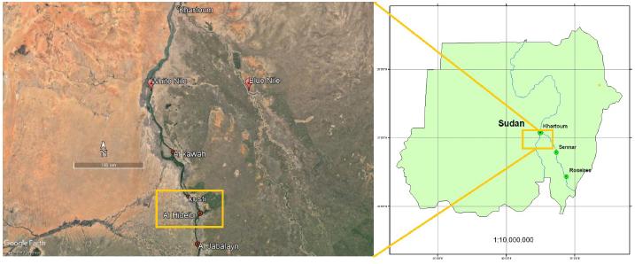 A new record for the invasive aquatic fern Azolla filiculoides Lam. in the White Nile, Sudan